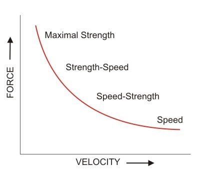 To Squat Or To Power Clean That Is The Question Sports Specific
